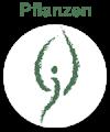 saeulen_heilpflanzen